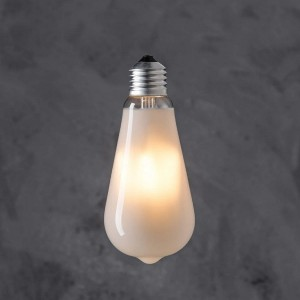 Edison decorative bulb ST 64 LED 4W - Frozen